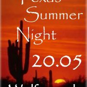 Texas Summer Night 2016 - Wolferstadt